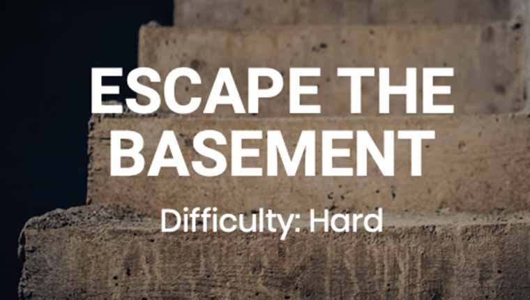 Roobicks: Escape The Basement (Play at Home)