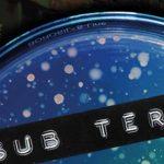 Co-decode: Sub Terra (Swindon)