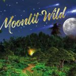 Pressure Point: The Moonlit Wild (Ashford)