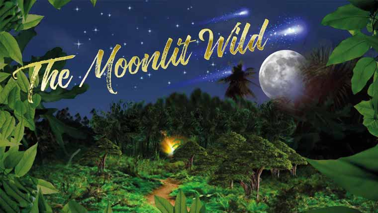 Pressure Point: The Moonlit Wild (Ashford)